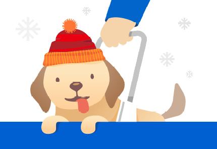 Een hond van Kerstmis.